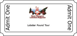 Lobster Pound Tour